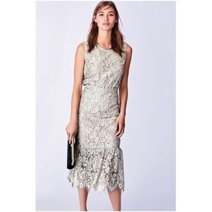 Dresses & Skirts - Sliver Lace Occassion Skirt